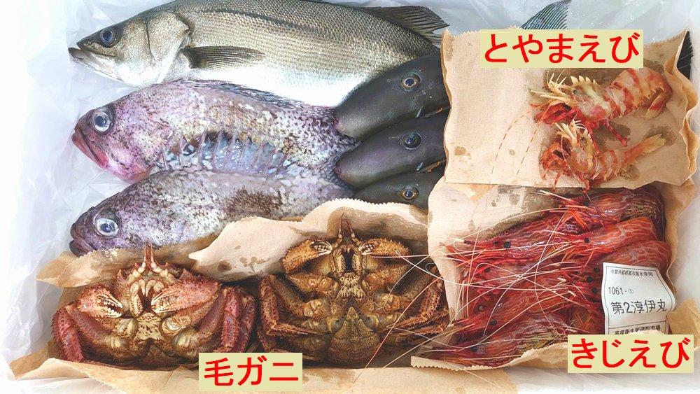 富山湾の魚介類。クロカラ、スズキ、ウマヅラハギ、毛ガニ、とやまえび、きじえび